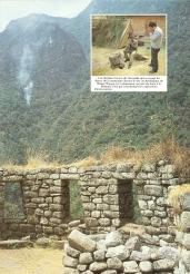 Peru 1989 Chemin Inca 02