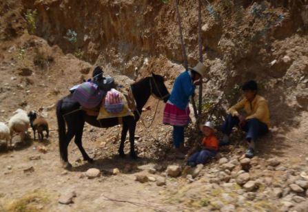 Santa Cruz 5 Cashapampa familia y caballo