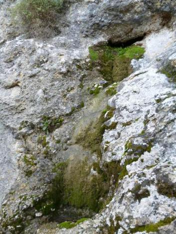 03 P1020382 cingles de son rul lan point d eau