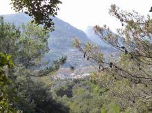 03 P1020388 pla des pouet vue sur valldemossa et sa comuna