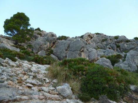 05 P1020488 la trapa dernier passage rocheux avant sant elm