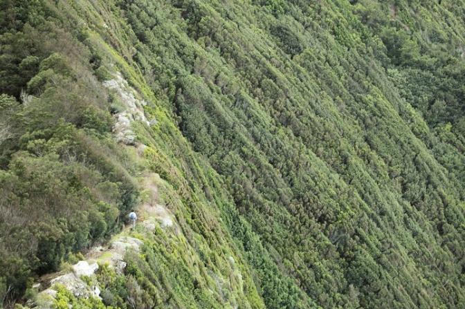 trekking cote nord tres abrupte