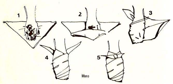 bandage main
