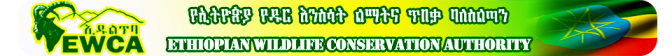 Ethiopie EWCA logo