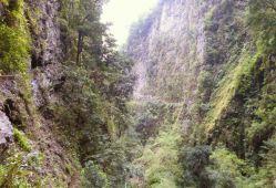 Resize of Levada da Ribeira da Janela 4 levada