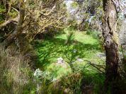 Resize of PR1-3 (11) Chemin de crete Meilleur bivouac Detail