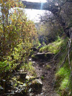 Resize of PR1-3 (12) Chemin de crete Cote Nord
