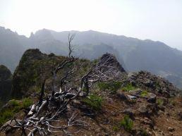 Resize of PR1-3 (19) Massif Pico Ruivo 2