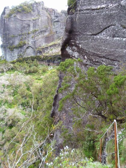 Resize of PR1-3 (29) Remontee Massif Pico Ruivo
