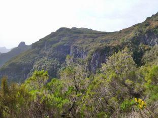Resize of PR17 vue de la barre rocheuse et du sentier au pied
