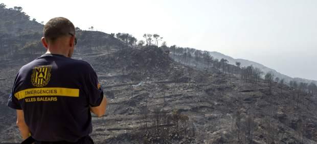 Extinguido el incendio de la Sierra de Tramuntana