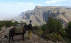 Ethiopie – Simien (5) Fotos partie haute de l'itinéraire