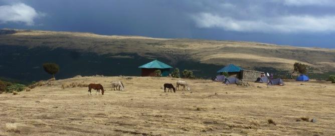 Simien 4 Geech camp (3)