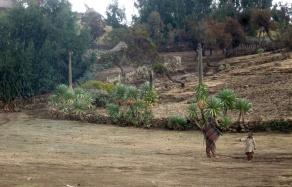Simien 4 Geech village (2)
