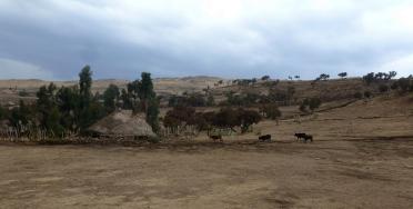 Simien 4 geech village (3)