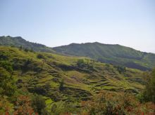 CaboVerde2013-H-29 Pico da Cruz Paysage deTope Verde