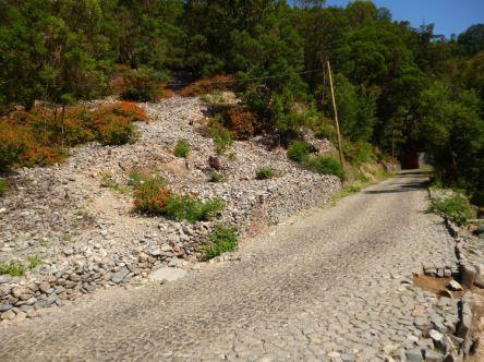 CaboVerde2013-H-31 Route Pico da Cruz