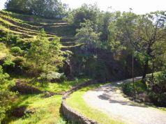 CaboVerde2013-H-33 Route Pico da Cruz apres le premier point de vue