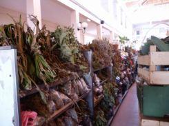 CaboVerde2013-X-35 Mindelo Marche central Herbes