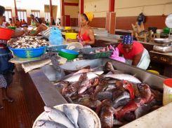 CaboVerde2013-X-36 Mindelo Marche poisson Tutti pesci