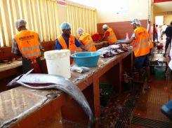 CaboVerde2013-X-41 Mindelo Marche poisson Depecage