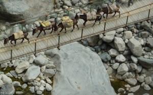 Canyon Colca pont de Achachigua