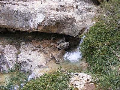 Sierra de Montsant (CIRCULAR DESDE ULLDEMOLINS) 5