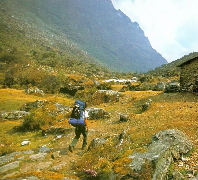 Venezuela-Sierra Nevada Paramo del Cardenilato