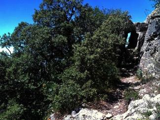 2014-07-12 Ruta dels Refugis (10)) Montée Mussara Arrivée pierre percée