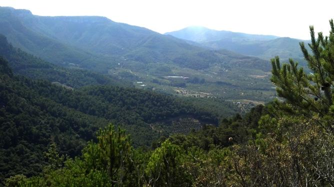 2014-07-12 Ruta dels Refugis (143) Cami dels Garrigots Panorama Vilaplana