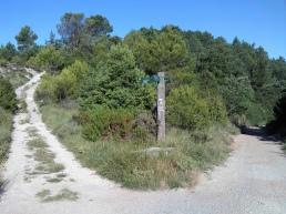 2014-07-12 Ruta dels Refugis (37) Mont Ral Sortie