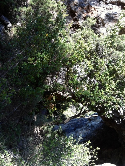 2014-07-12 Ruta dels Refugis (40) autre roca forada