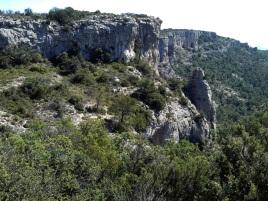 2014-07-12 Ruta dels Refugis (43) Portell de l'Aberella piton
