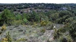 2014-07-12 Ruta dels Refugis (47) Plateau Motllats