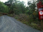 2014-07-12 Ruta dels Refugis (76) route forestiere Pla de Guardia