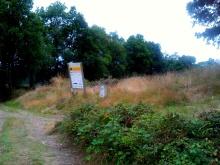 Camino Primitivo Mayake 30 Borres bifurc camino hospital