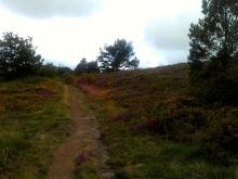 Camino Primitivo Mayake 31 Grau Cimeru
