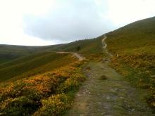 Camino Primitivo Mayake 37