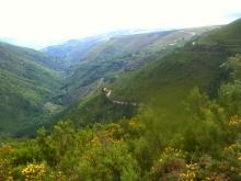 Camino Primitivo Mayake 50