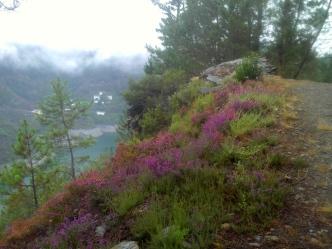 Camino Primitivo Mayake 53 Lac Salime