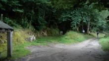 Camino Primitivo Mayake 74 Castroverde fuente