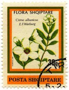 Flora shqiptare stamp 1
