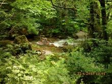 IMG_1040 rivière à passer à gué