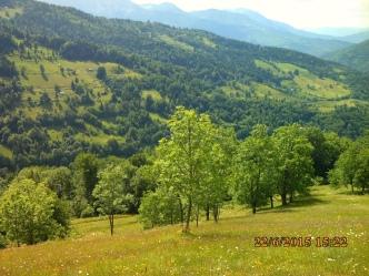 IMG_1048 katun treskavica mont en face